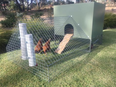 chook house - close upjpg