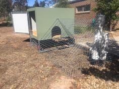 chook house - sidejpg